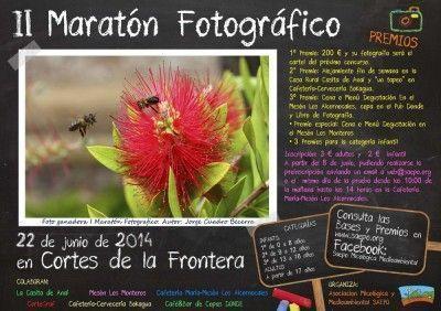 cartel_II_Maraton1