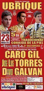 cartel_toros_corrida_piel_2013_p