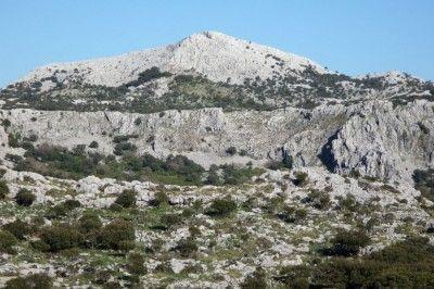 Morrocano
