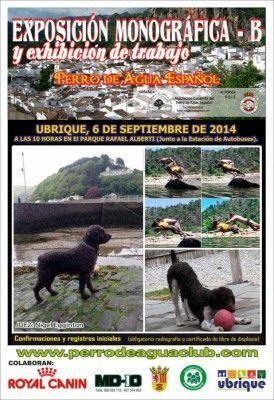 cartel-perro-agua-ubrique-2014-nuevo-704x1024