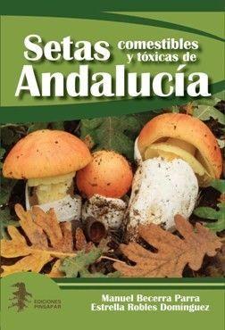 Setas CYT Andalucia