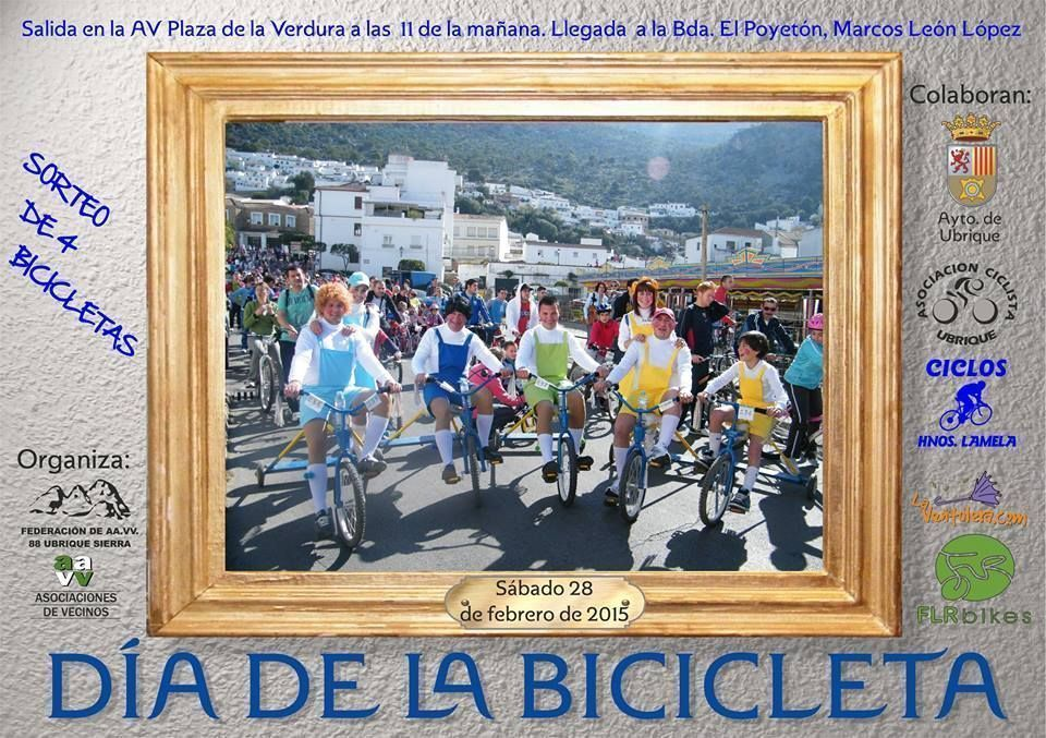 dia-bicicleta-15