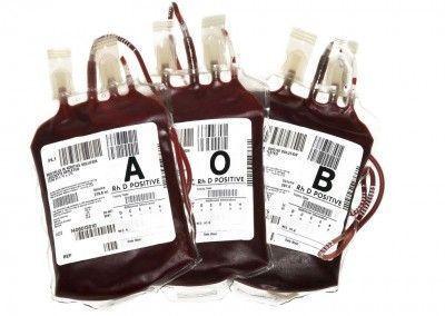 s50-ciencia-sangre-2