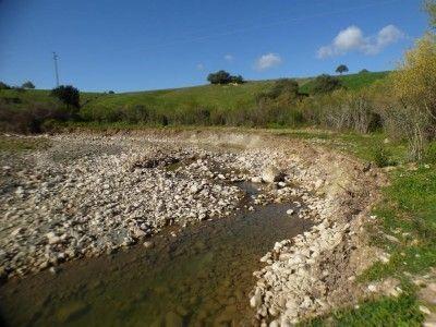 Cauce río