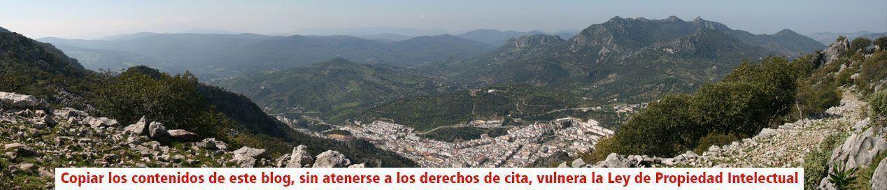 La Mañana